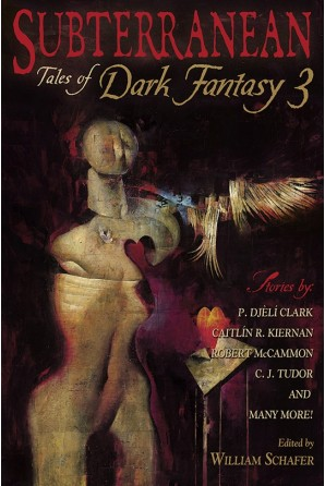 Image for SUBTERRANEAN: TALES OF DARK FANTASY 3