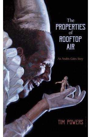 Image for THE PROPERTIES OF ROOFTOP AIR (signed/limited ed.)